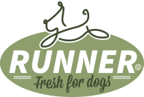 Runner Dogfood